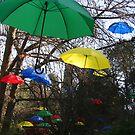 Umbrellas by Kamran Baig