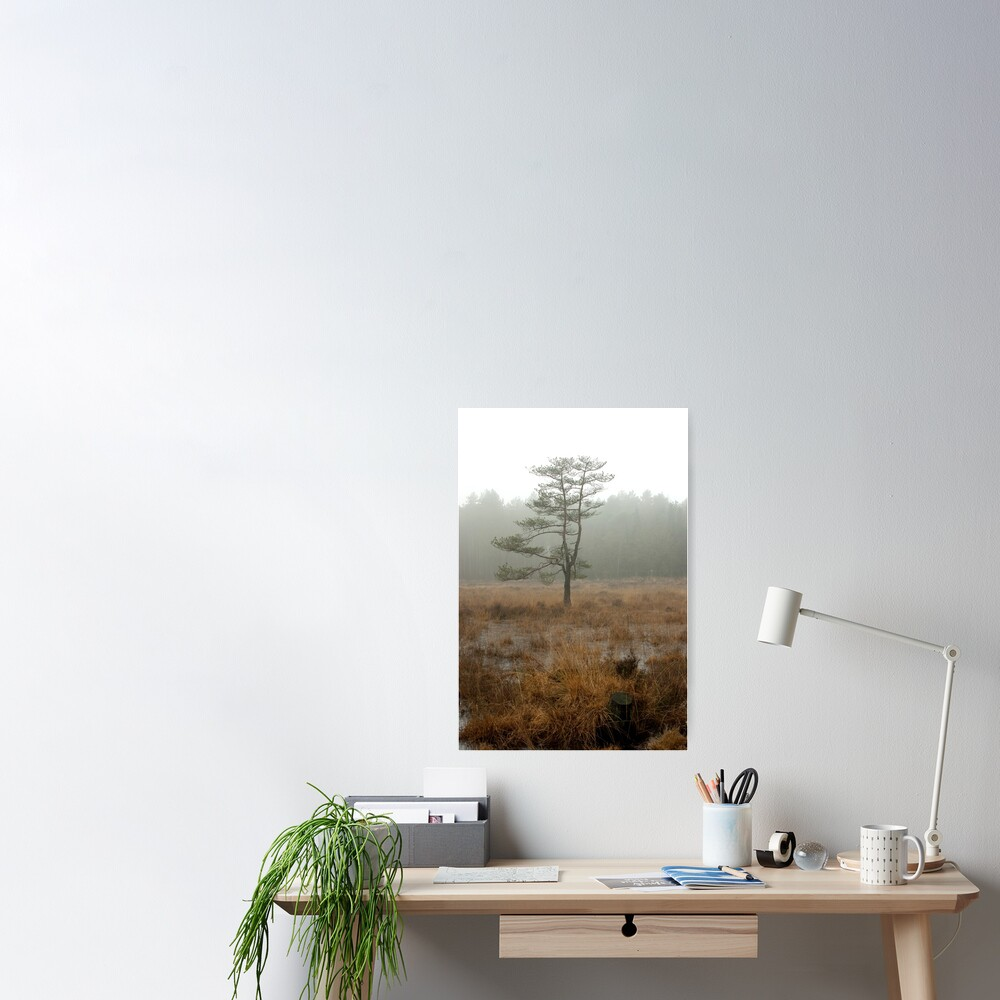 Silent tree in misty land Poster