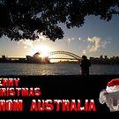 Australian Christmas card 3 by Bernie Stronner