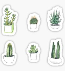 Watercolour cacti & succulents Sticker