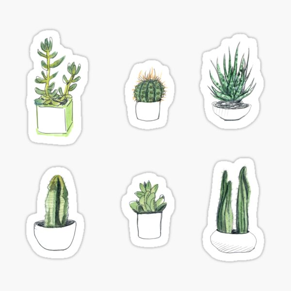 Watercolour cacti & succulents Sticker