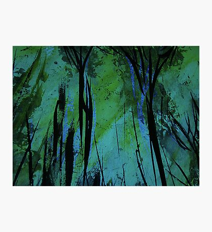 charred forest... new growth, green light filtering through Photographic Print