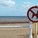 No Dogs Please by justlinda