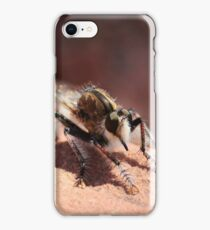 Unknown Critter / Insect iPhone Case/Skin