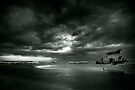 Armageddon by Vikram Franklin