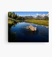Schwabacher Landing - Grand Tetons National Park, Wyoming Canvas Print