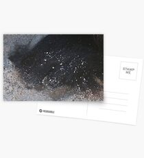 large,giant dogs paw Postcards