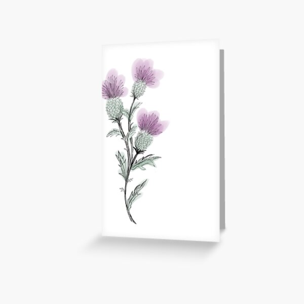 Watercolor Thistle  Greeting Card