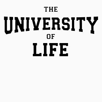 University of Life by gurumel