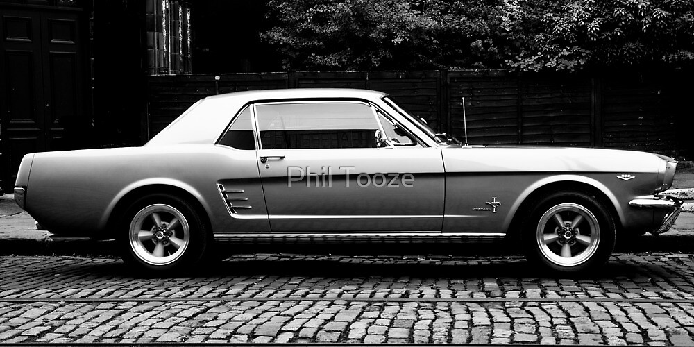 Mustang  by riotphoto