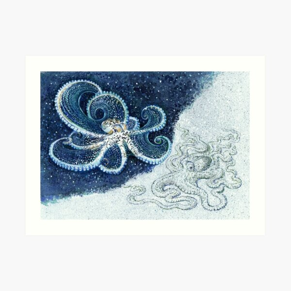 Postcards for the Reef 12: A pair of Mimic Octopi Art Print