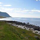 View towards greenland by Annbjørg  Næss