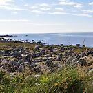 Greenland next. by Annbjørg  Næss