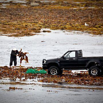 Kelp Harvesting on Inish Mor by Marloag