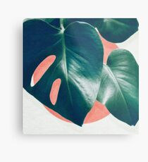 MONSTERA #1 Metal Print