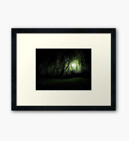 Night Willow Framed Print