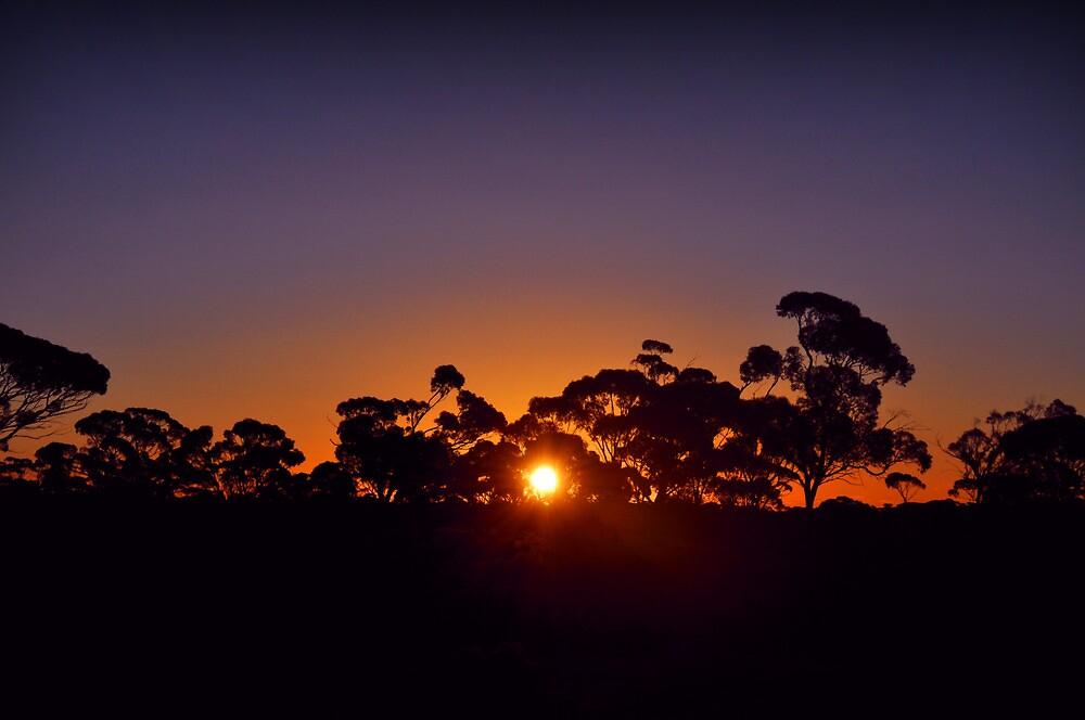 Kalgoorlie landscape sunset by SummerJean