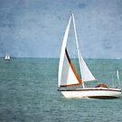 Sailing by Teresa Young
