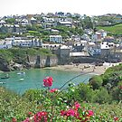 Port Isaac, June 2019 by RedHillDigital