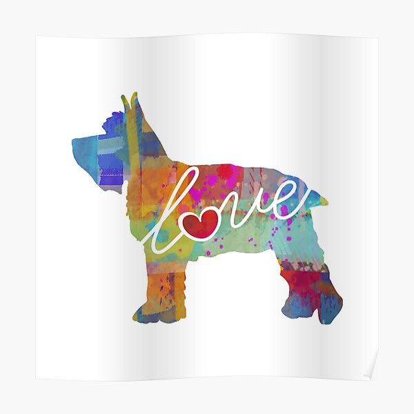 Mini Schnauzer Love - A Bright and Colorful Watercolor Style Gift Poster