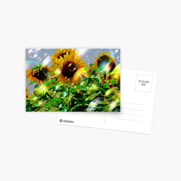 Bubbly Make A Wish Sunflowers Postcard