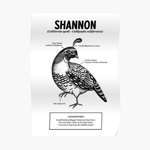 Une caille nommée Shannon Poster