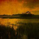 Island in the sun by Susanne Van Hulst