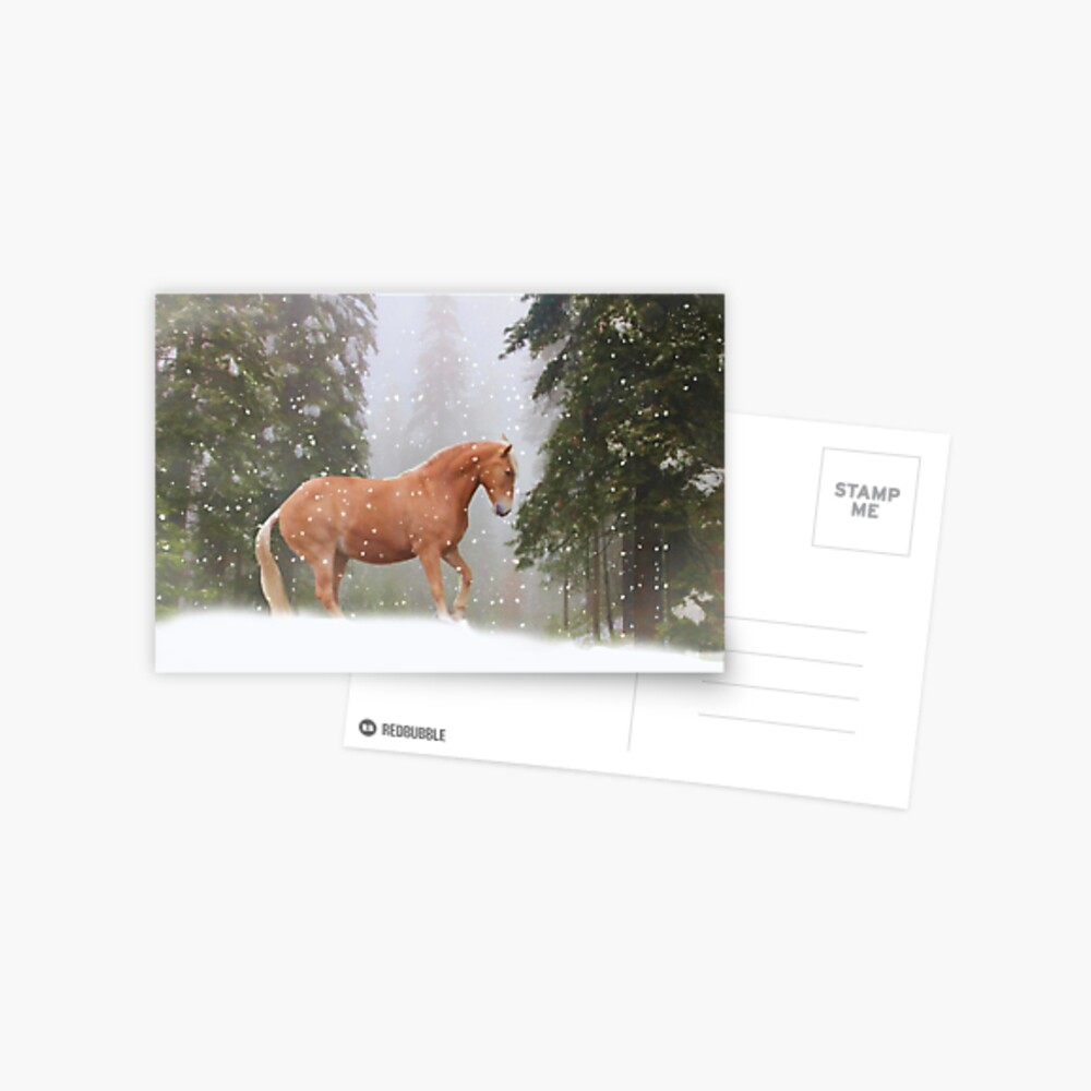 Weihnachtspferd Postkarte