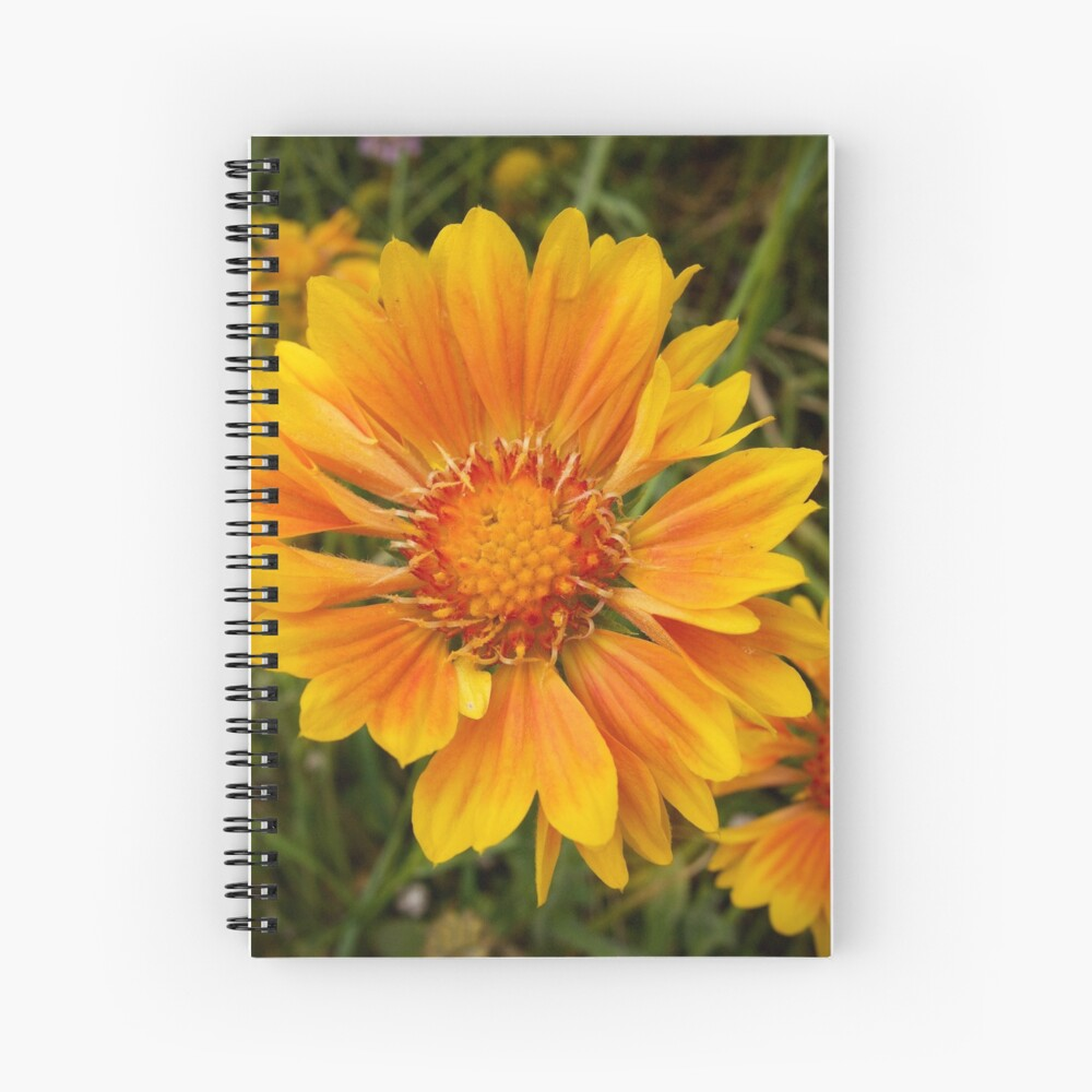 Shining Bright from A Gardener's Notebook Spiral Notebook