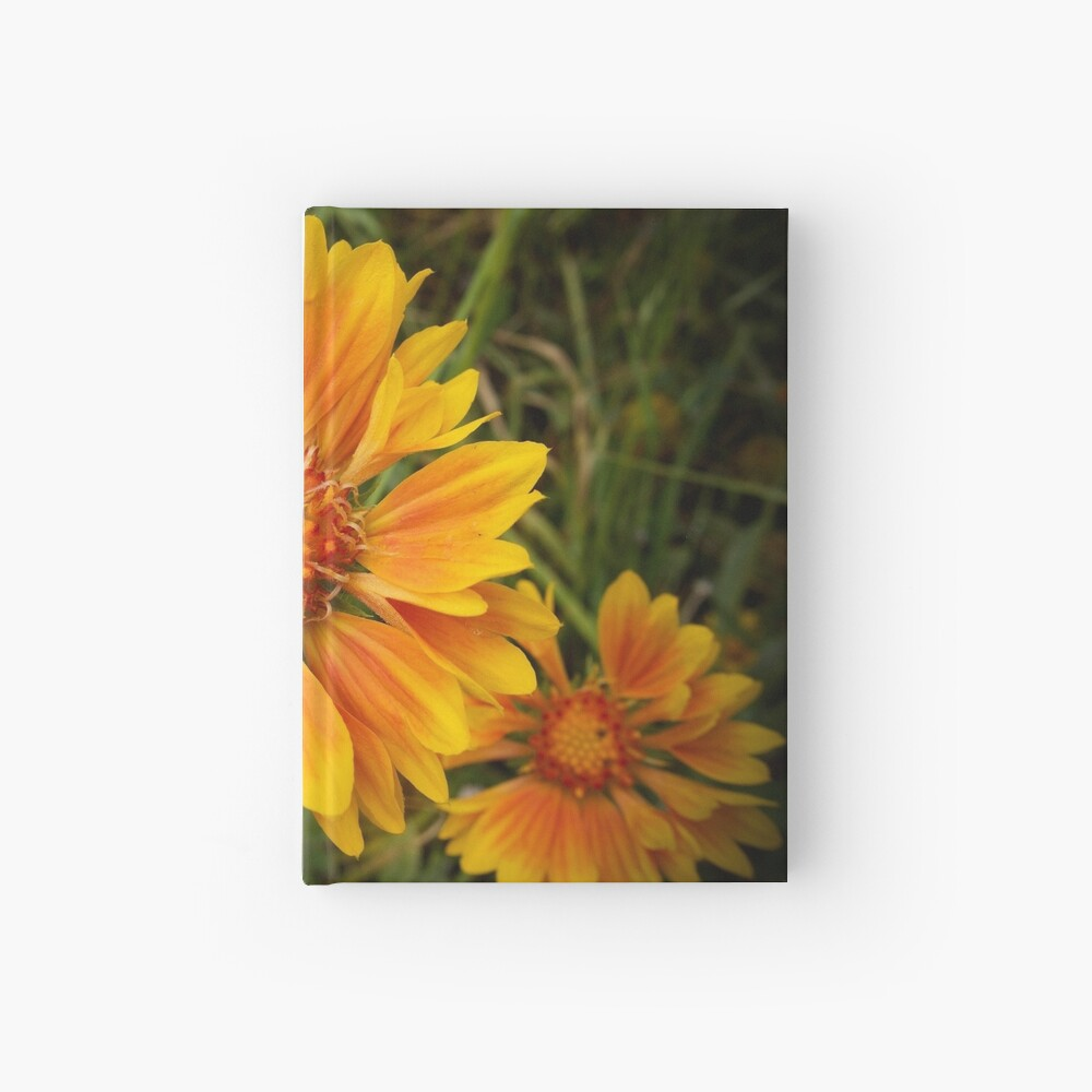 Shining Bright from A Gardener's Notebook Hardcover Journal