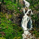 Steavensons Falls #1 by Jason Green