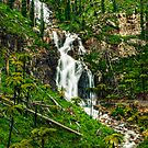 Steavensons Falls #3 by Jason Green