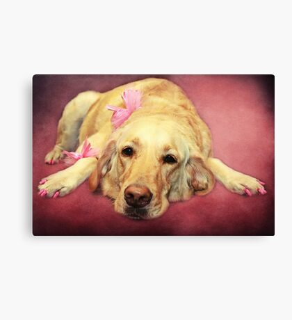 Morgan.... the Madam of the Seeing Eye Dogs Canvas Print