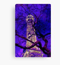 landmark chicago water tower Canvas Print