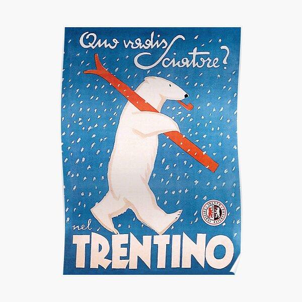 Ski-Bärn-Winter-Vintages Sport-Reise-Plakat Poster