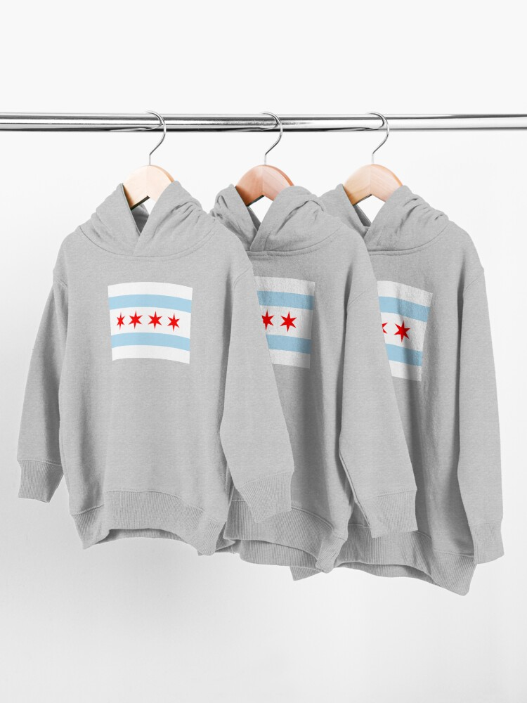 Alternate view of Flag of Chicago Toddler Pullover Hoodie