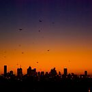 Melbourne Twilight by Frank Yuwono