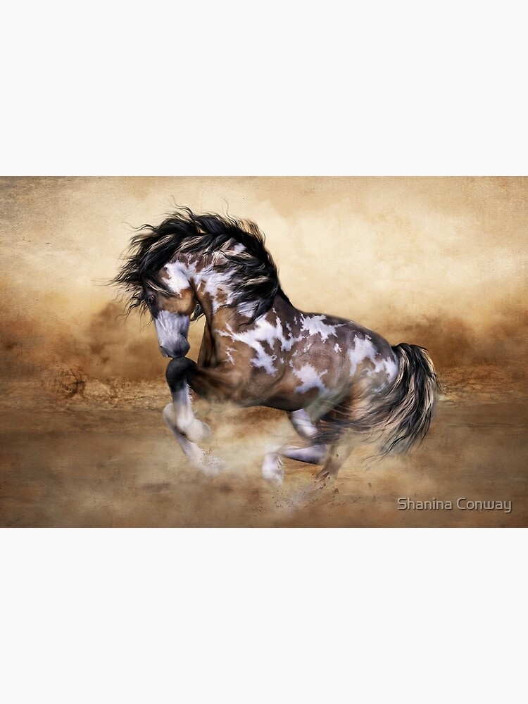 The Wild,The Free Painted Horse by Allegra