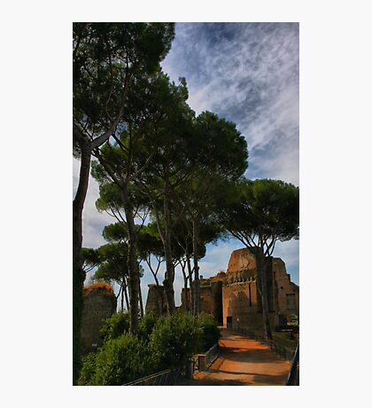 On Palatine Hill Photographic Print