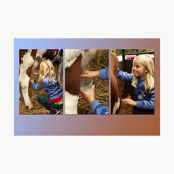 The girl and the cow - triptych 2 Photographic Print