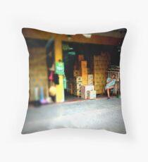 Shop Keeper Throw Pillow