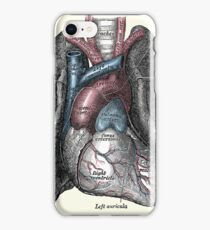 Lungs iPhone Case/Skin