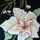 Hawaiin Pua by Allegretto
