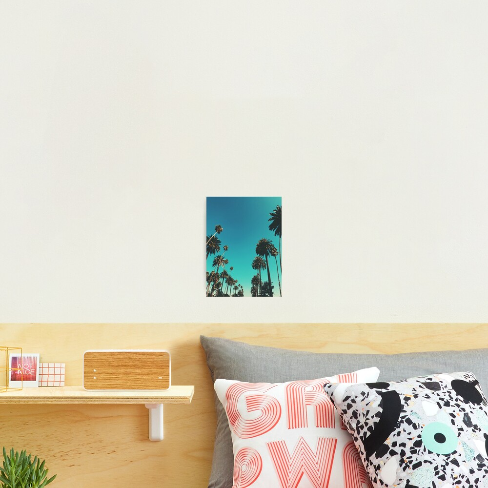 Los Angeles Palm Trees Photographic Print