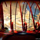 Rippling Hayrake Sky by Debbie Robbins