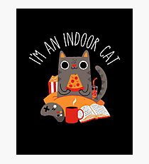 Indoor Cat Photographic Print