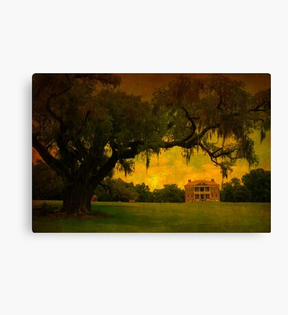 Drayton Hall Plantation in Charleston SC Canvas Print