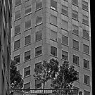 Urban Living in San Francisco - A Garden in the City by Buckwhite