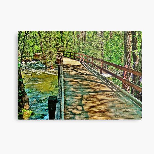 Roaring Fork River, Aspen 3 Metal Print