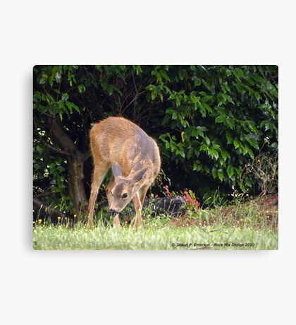Dining Out Canvas Print